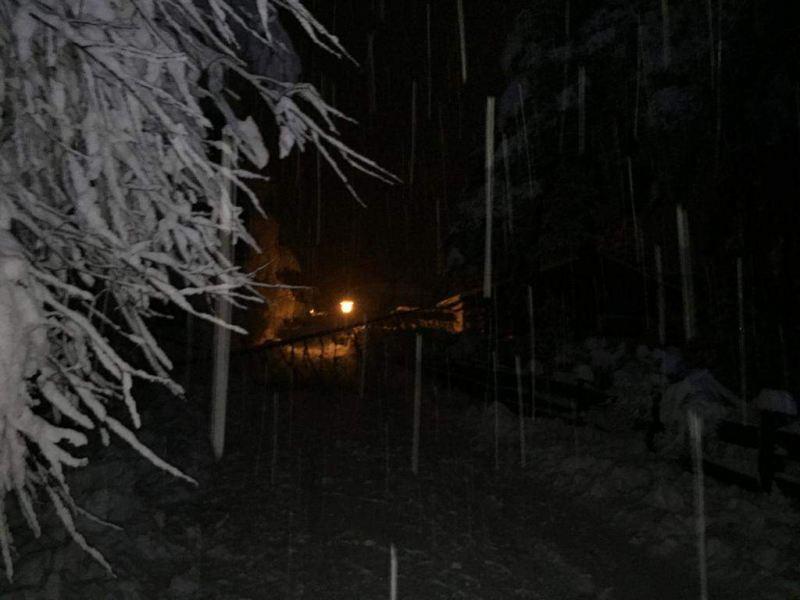 Schneeschaeden_02