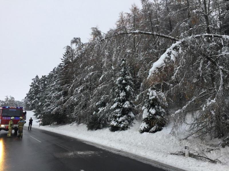 Schneeschaeden_09