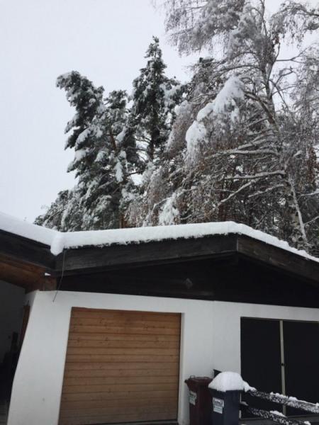 Schneeschaeden_10