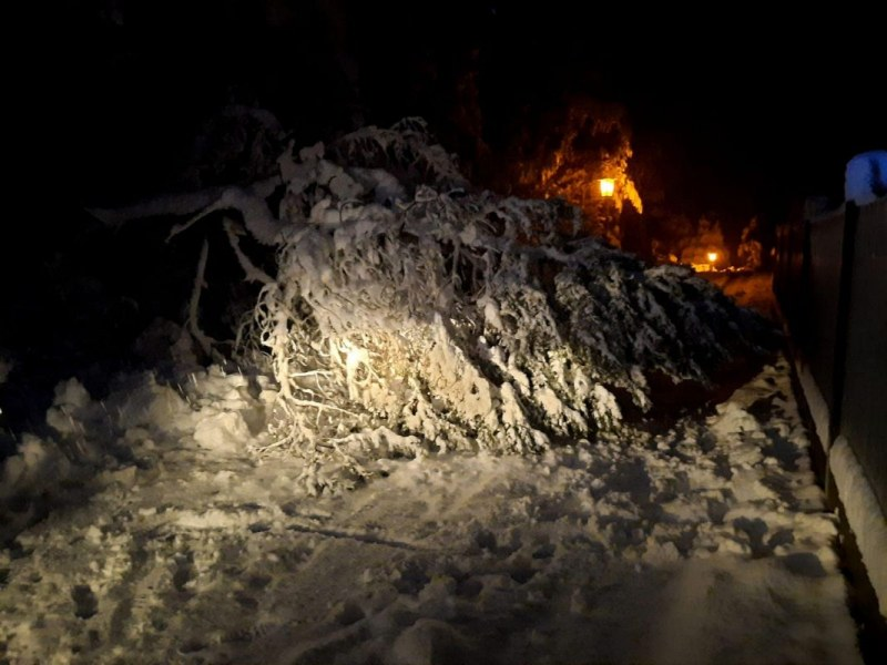 Schneeschaeden_12