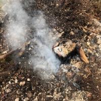 kleinerbrand03-04-19-2
