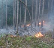 waldbrand_fiecht-26-05-3