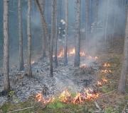 waldbrand_fiecht-26-05-8