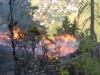 waldbrand_fiecht-26-05-5