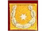 LBD Stv., Landesbranddirektor Stv.