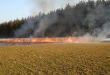 Kleiner Brand im Freien in WIldermieming